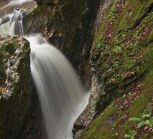 Bristol Memorial Park Falls by akaurora