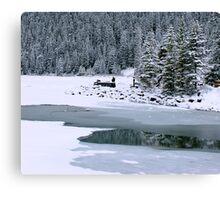 Frozen beauty, Lake Louise, Alberta Canada Canvas Print