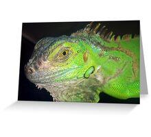 Rambo Iguana Greeting Card
