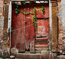 The Red Door by Lynnette Peizer