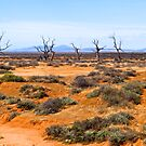Manmade desolation, South Australia. by johnrf