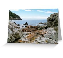 Grass Point and Penguin Island Greeting Card