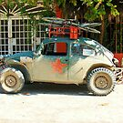 VW Rally Bug Side View (1 of 3) by Carole Boudreau