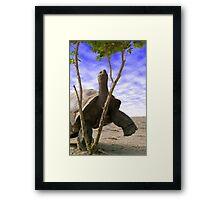 """""""Reaching For The Green"""" - giant tortoise has determination Framed Print"""