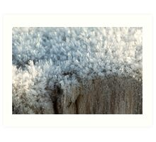 Fascinating ice crystals 3 Art Print