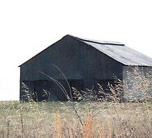 Old barn near Adams, TN by Phil Roberson