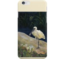 Spoonbill iPhone Case/Skin