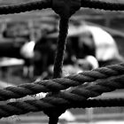Show me the Ropes by Chris Cardwell