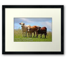 The Grass is always Greener on the other side of the Fence! Framed Print
