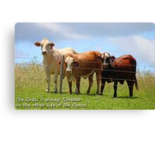 The Grass is always Greener on the other side of the Fence! Canvas Print