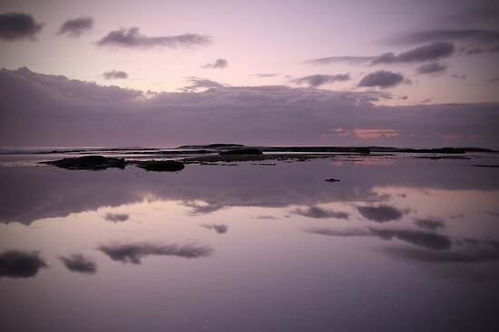 Peace by Matt Penfold