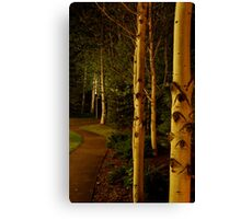 night aspens.  snowmass, colorado Canvas Print
