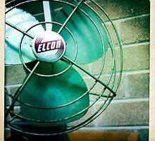 The Old Fan by Marita