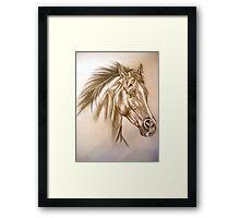 Untamed - Arabian Horse in flight Framed Print