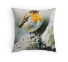 The Winter Bird Throw Pillow
