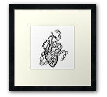 Anatomical DNA Heart Framed Print