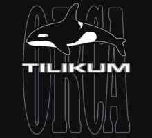 Tilikum -- A Controversial Orca in Captivity by Samuel Sheats