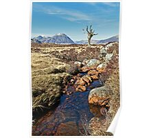 Lone Tree of Rannoch Moor Poster