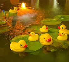 """Rubber Duck Dipping""  by John Hartung"