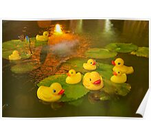 """""""Rubber Duck Dipping""""  Poster"""