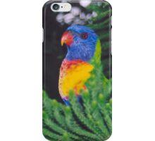 Rainbow Lorikeet iPhone Case/Skin
