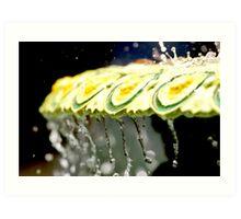 Fountain Splash Art Print