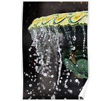 Fountain Splash II Poster