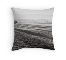 Slices of winter # 12 Throw Pillow