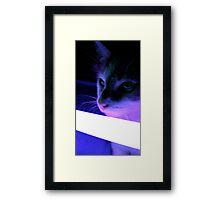 Tigger and Her Lightsaber II Framed Print