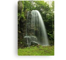Kilfane Waterfall Canvas Print