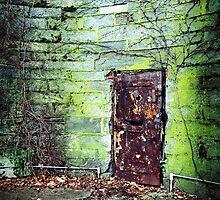 Behind the Red Door by sadandbeautiful