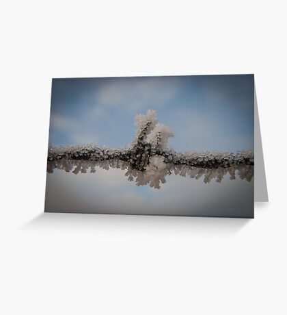 Frost Clinging To Barbed Wire Greeting Card