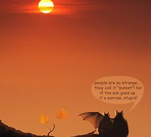 love bats admiring the sunset! by VallaV