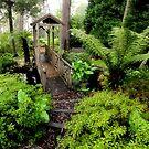 The Bridge - Carmarthen Mt Wilson NSW by Bev Woodman