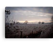 Cold Scottish Field Canvas Print