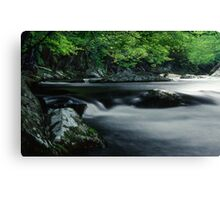 Riverbank in the Great Smoky Mountains Canvas Print