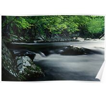 Riverbank in the Great Smoky Mountains Poster