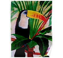 Toucan Bird Wildlife South American Jungle Acrylic Painting Poster