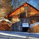 Shadows on the Barn by Monica M. Scanlan