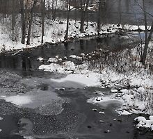 Winter On The Moira River by Tracy Wazny
