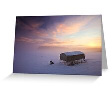 Border Collie in the snow at sunrise Greeting Card
