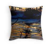 Snow and Ice on The Way to Bailey Island Throw Pillow