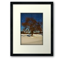 Frozen Apples Framed Print