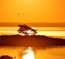 Peconic River Morning | Riverhead, New York  by © Sophie W. Smith