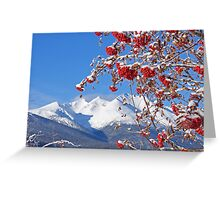 Snowy Mountain Ash Greeting Card