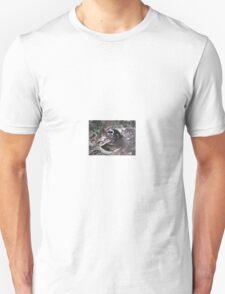 African Penguin, Boulders Beach, South Africa T-Shirt