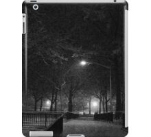 NYC Snowy Path B&W iPad Case/Skin
