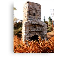Standing Fireplace Canvas Print