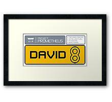 David 8 Framed Print