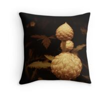 Peace, Passion & Persistence  Throw Pillow